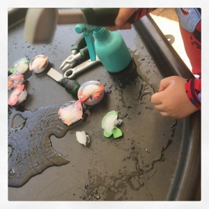 Yesterday @play.hooray shared her quick tip for freezing objects in a cupcake tin. This is a super idea so much easier than freezing objects in freeze bags. Perfect as they each come out in small blocks. I only had to hand plastic butterflies but he loves it!