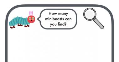 Minibeast Hunt Recording Sheet