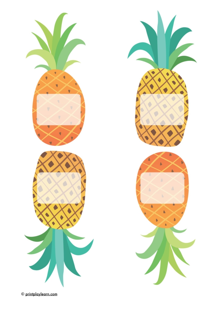 pineapple labels and signs