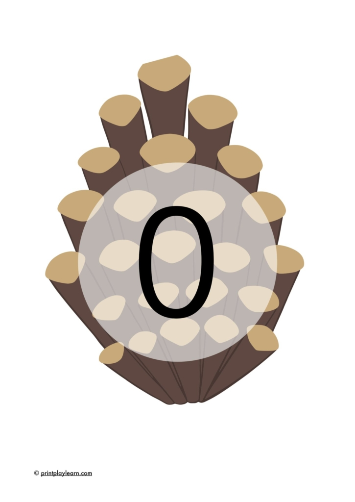 numbers on pinecones 0-20 EYFS display