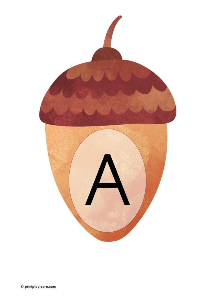 acorn display lettering alphabet a-z