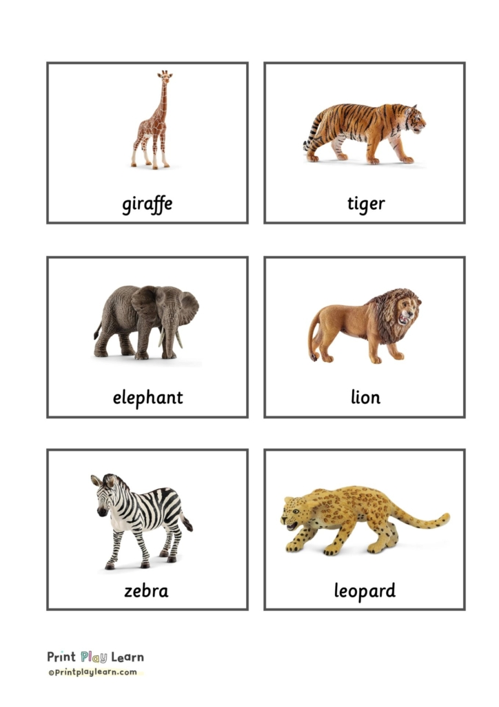 grey grid with images of toy animals and word written underneath montessori classification cards