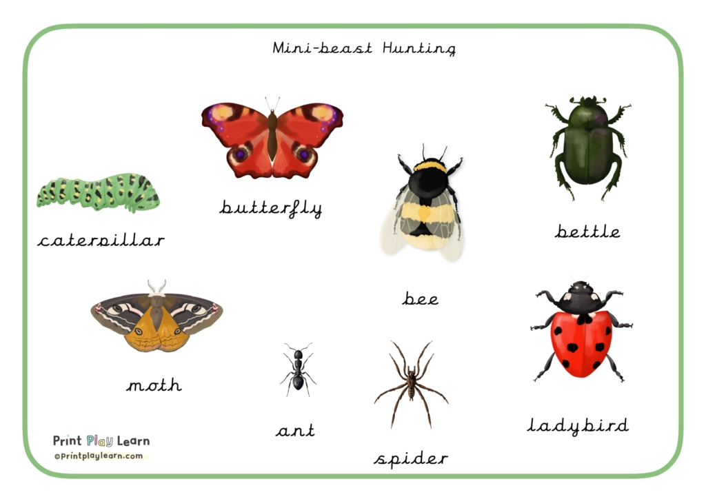 printplaylearn word mat of insect drawing for identification