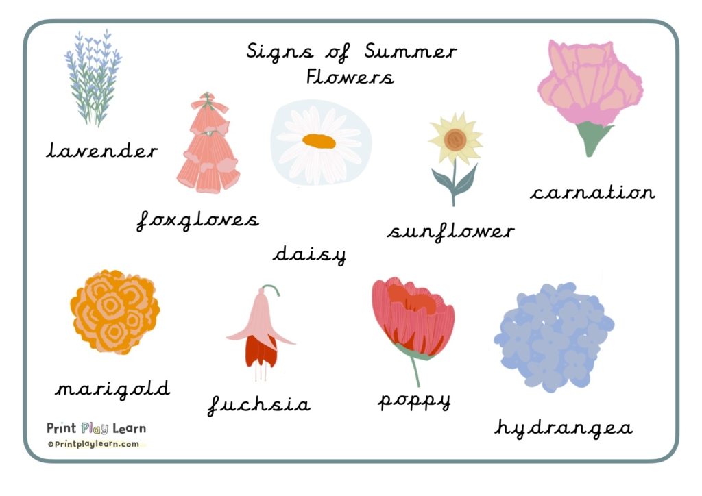summer flowers printplaylearn