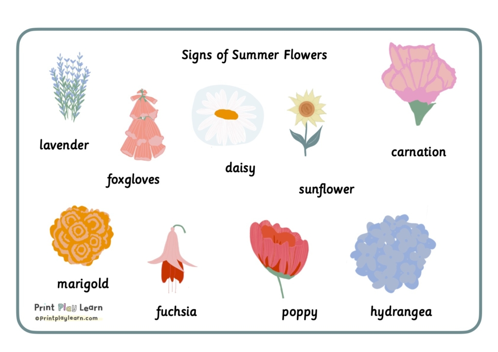 Montessori font images for summer flowers printplaylearn
