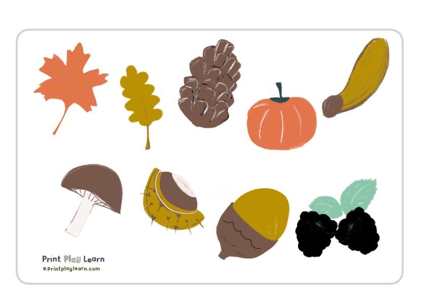 autumn images leaves pinecone blackberrie