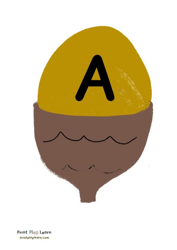 acorn autumn alphabet A to Z kids play